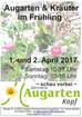 Augarten & Kräuter im Frühling