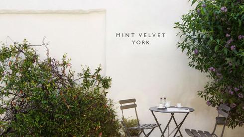 Mint Velvet.jpeg