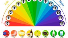 מהו ה- pH ? למה הוא חשוב?