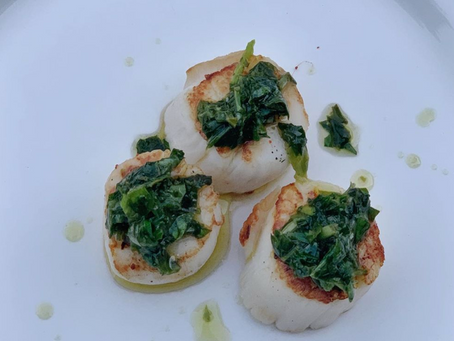 Summer Scallops with Herb Sauce