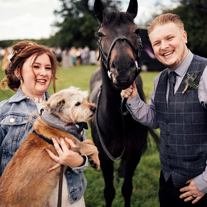 wedding-pets-horses-dogs