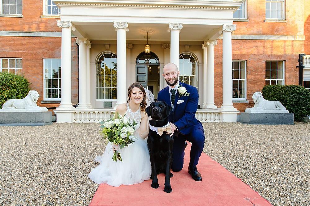 wedding-pets-dogs