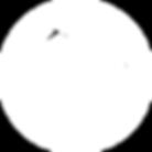 Peak Logo circle white.png
