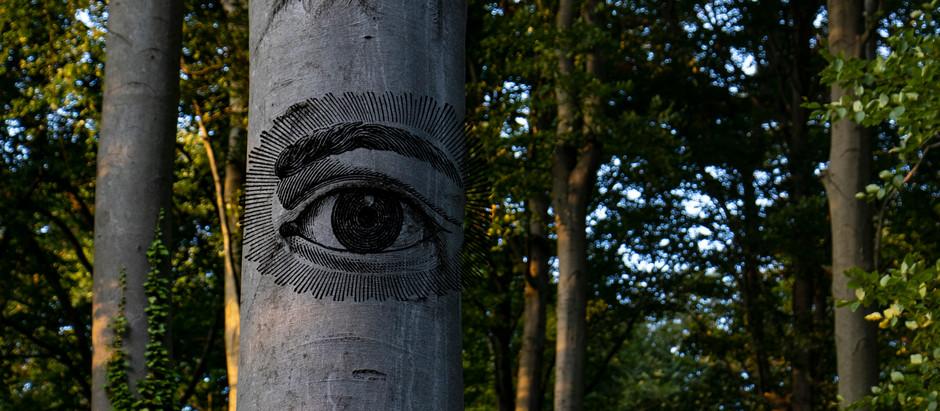 Baumbildchallenge Nummer3, Seele