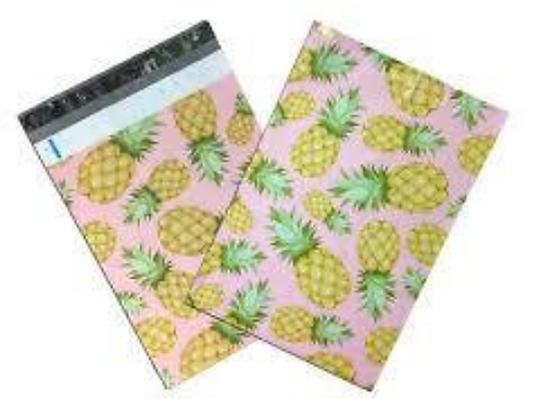 10x13 Pineapple Poly Mailers 10ct