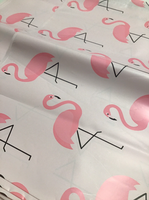 10ct Flamingo Polymailer 10x13