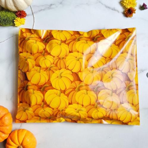 5ct Pumpkin Polymailer 10x13