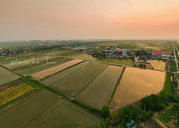 Rice Field Sunset- Pyeongtaek, South Korea 🇰🇷