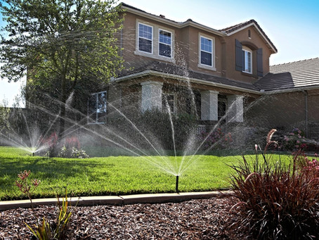 Sprinkler System Startup