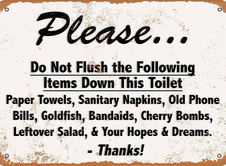No Toilet Paper? Be Careful What You Flush