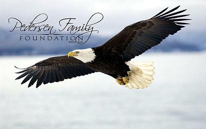 pedersen family foundation.jpg
