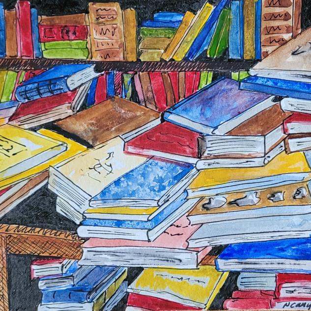 Books/Nancy Canyon (Ink & watercolor)