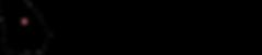 BCCSS Foundation Logo Concepts FINAL Hea