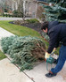 Does your tree fall over? Check out our installation tips!