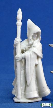 Reaper 77068, ANIRION, WOOD ELF WIZARD), REAPER BONES