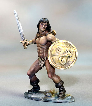 Male Barbarian with Sword and Shield - DSM7359