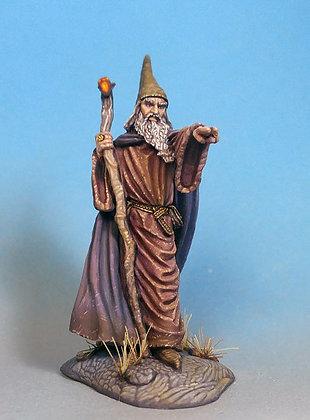 Sturm – Male Wizard with Staff - DSM7345