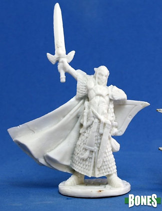 Reaper 77044, TURANIL, MALE ELF PALADIN, REAPER BONES