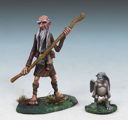 Human Wizard with Familiar - DSM4603
