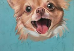 Puppy Mural