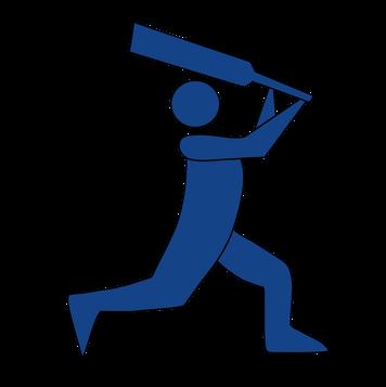 Men's Cricket
