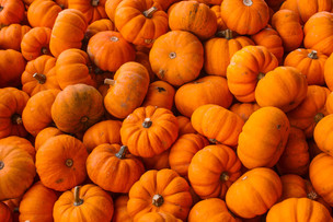 Easy recipes to create with those left over pumpkins