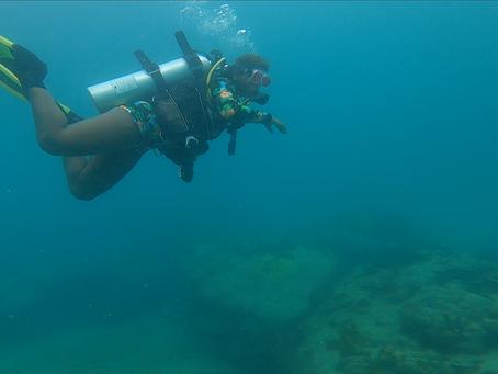 Capoeira Under the Sea
