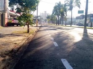 Grupo fez ciclofaixa na Avenida Independência (Foto: Thainara Cabral/G1)