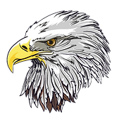 BALD-EAGLE-HEAD-FOR-RV.png