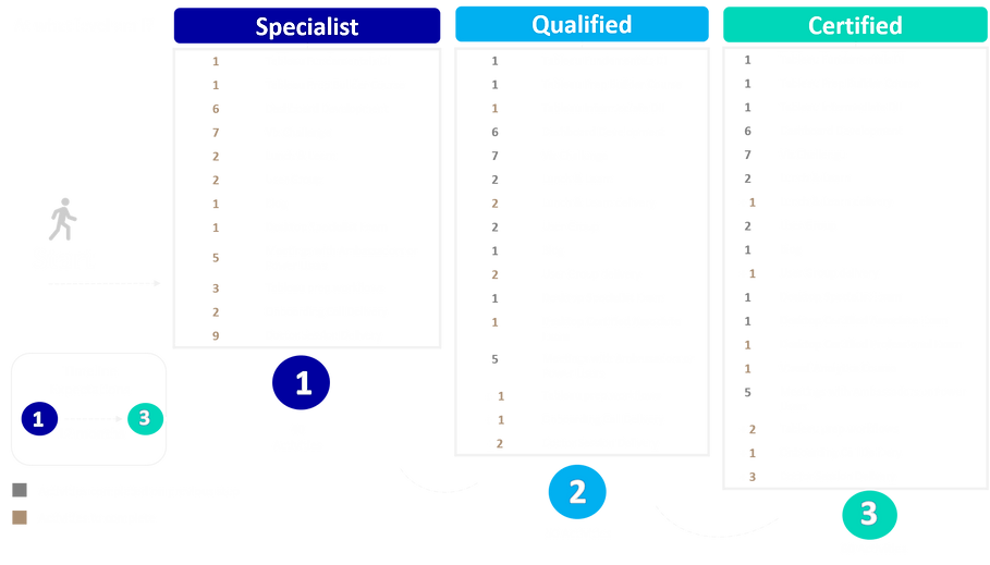 Data Champion Expert.png