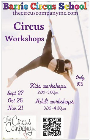 Barrie Circus School Aerial Workshops