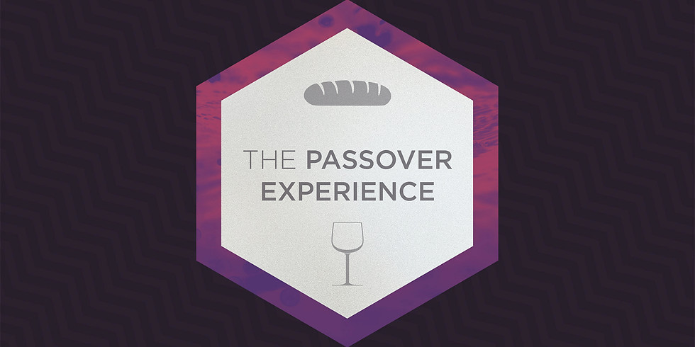 The Passover Experience