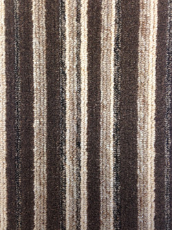 A Dozen Stripes - Hedgehog 780