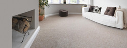 View Our Collection Of Carpets