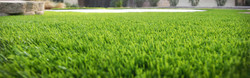 View Our Artificial Grass Collection