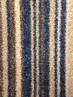 A Dozen Stripes - Water Life 380