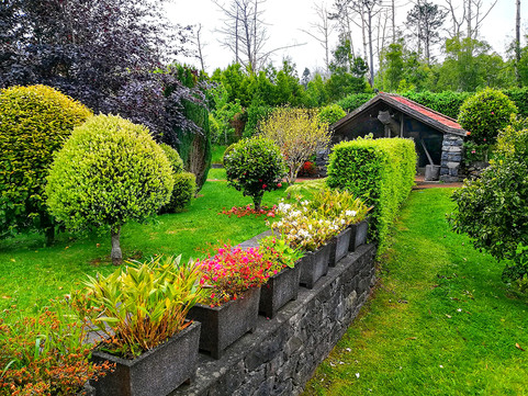 Back Lawn toward lagar