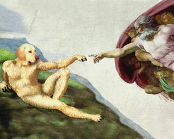 Michelangelo_Creation_PRINT