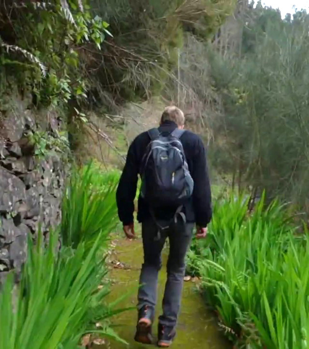 Parque do Santo da Serra hiking