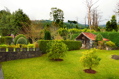 Back Lawn toward lagar