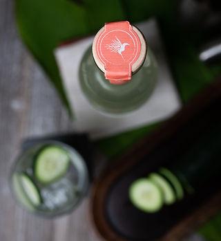 12.22.2020_Xoma Bottles-56.jpg