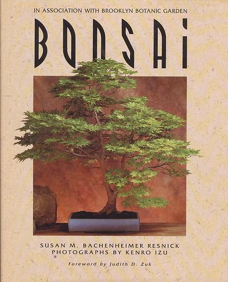 Bonsai - Brooklyn Botanical Garden