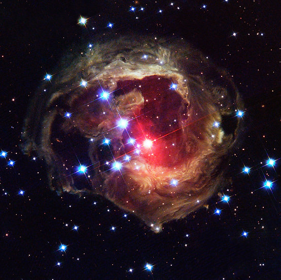 Monocerotis - Contact for size/prices