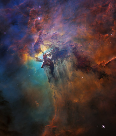 P1821a - Contact for size/prices