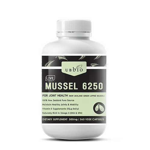 LIVE GREEN LIPPED MUSSEL 6250