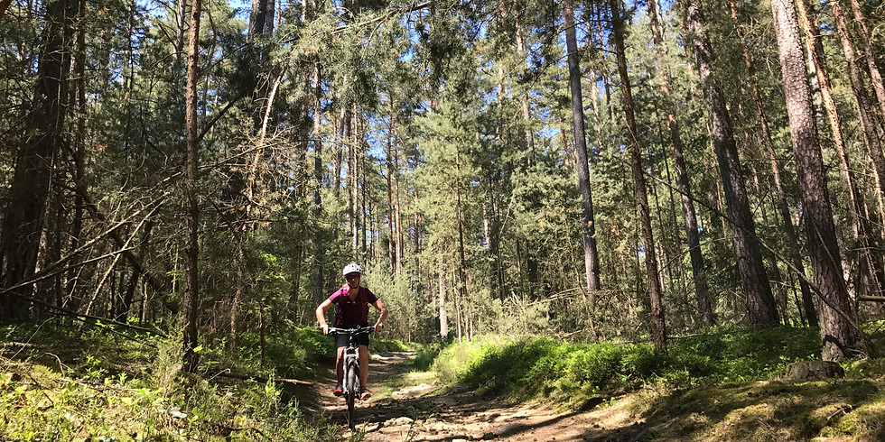 Mountainbike-Fahrtechnik-Kurs für Frauen in Roth