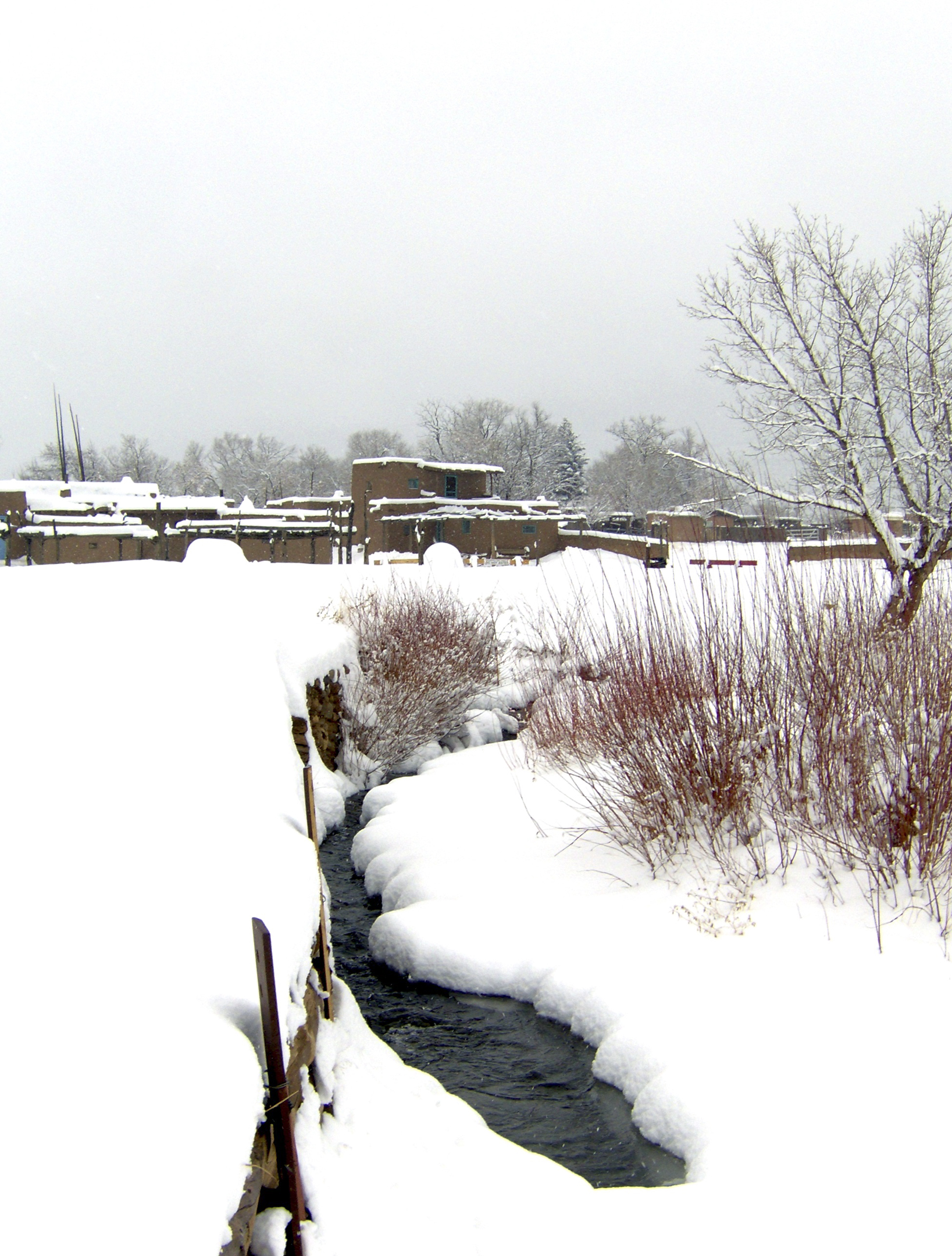 red willow snowfall