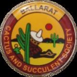BallaratCSS Logo.PNG