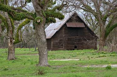 historic-baconton-ga-stock-barn-pecan-or