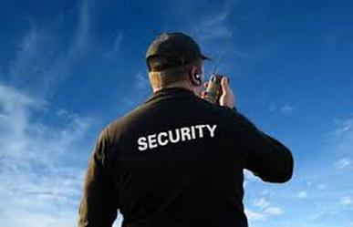 Virtus Security Services in Arlington VA